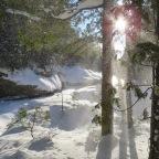 Parc régional naturel de Portneuf, version hivernal